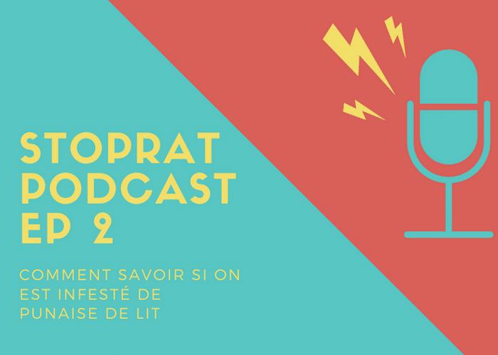 Stoprat Podcast EP 2 – Comment savoir si on est infesté de punaise de lit?